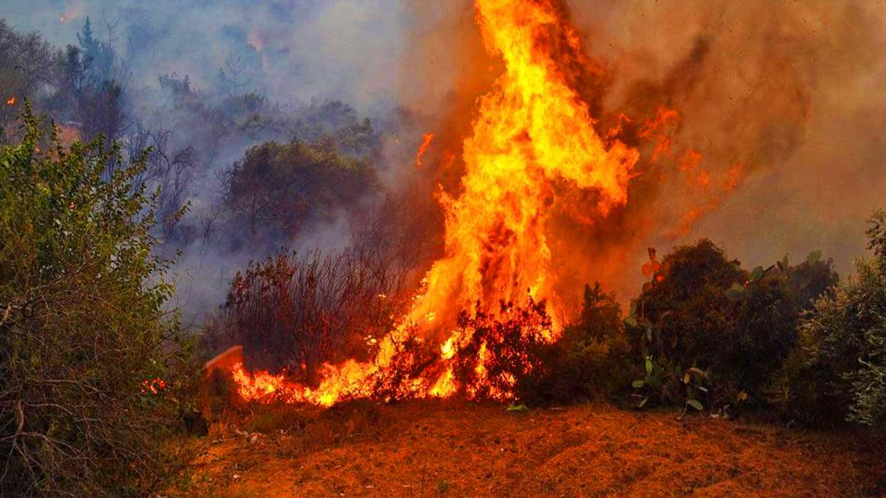 ΚΟΥΡΔΙΚΗ ΕΠΙΘΕΣΗ ΣΤΗΝ ΤΟΥΡΚΙΑ: Φλέγονται δάση στην Αλεξανδρέττα